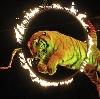 Цирки в Астрахани